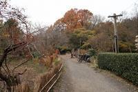 ■柴垣の補修17.12.6 - 舞岡公園の自然2
