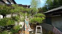 仲間の家の庭手入れ - 空の旅人