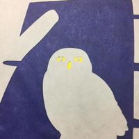 夜のフクロウ - シロリス