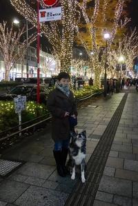 表参道のクリスマスと気が早すぎる仲見世 - パームツリー越しにgood morning        アロマであなたの今に寄り添うブログ