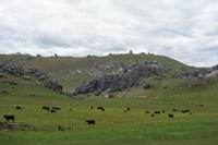 NZ:キャッスルヒル - bluecheese in Hakuba & NZ:白馬とNZでの暮らし