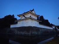 ノルディックフィットネスフォーラム2017 in Kyoto②*朝散歩* - 清治の花便り