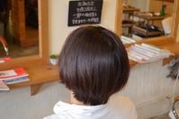 髪が細くなってきたんじゃなかろうか・・・ - 館林の完全お一人様専用 くつろぎの美容室 ぱ~せぷしょんの ウェブログ