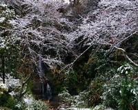 すぐにとけました - 金沢犀川温泉 川端の湯宿「滝亭」BLOG