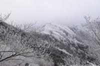 明神平へ - ratoの山歩き