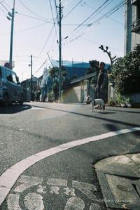 愛犬と散歩 - BobのCamera