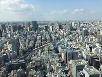 東京にて⑧アフタヌーンティー@マンダリンオリエンタル東京 - 小さなバラの庭と手作りせっけんのなちゅらるらいふ