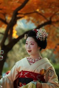 秋色の純真 - 一茶の道楽日記