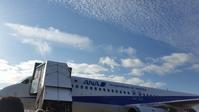 八丈島 - スサキハウスサービスほのぼのブログ
