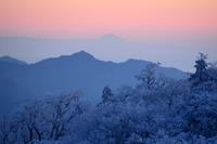 富士遠望明神平~桧塚 - 峰さんの山あるき