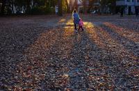 都立赤塚公園紅葉そろそろ終わり - 東京雑派  TOKYO ZAPPA