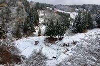 初冬の里山 - 松之山の四季2