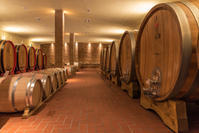 頭の中 - Life in Tuscany...トスカーナのワイナリーで美味しい生活