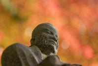 2017年の箱根長安寺の紅葉 - エーデルワイスPhoto
