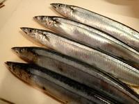 今年の秋刀魚 - 楽子の小さなことが楽しい毎日