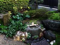 風情感じる庭 - じょんのび