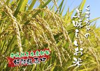 熊本の美味しいお米(七城米、菊池水源棚田米、無農薬砂田のれんげ米)大好評発売中!こだわり紹介その1 - FLCパートナーズストア