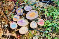 星空キャンプ〔3日目〕最後は森の中で星を探して、木の天体ペンダントを作りました! - ねこんちゅ通信(ネコのわくわく自然教室)