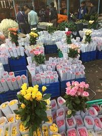 花市場はオッサンだらけ - Blue Lotus