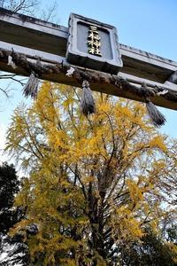 京の都巡り④三栖神社 - 写心食堂