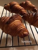 タイプERとウーヴリエクロワッサン粉比べ - 天然酵母パン教室  ほーのぼーの