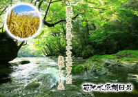 熊本の美味しいお米(七城米、菊池水源棚田米、無農薬砂田のれんげ米)大好評発売中!こだわり紹介 その2 - FLCパートナーズストア