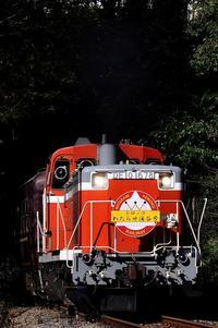 171106 トロッコわたらせ SL大樹 - コロの鉄日和newver