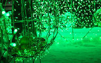 W. I ・green - ユルリ ユルリト。