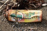 殺虫スプレー缶 - こんなものを見た2