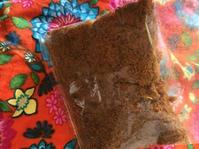 コタバルで買った物 - プラナカンビーズ刺繍  ビーズワークと旅