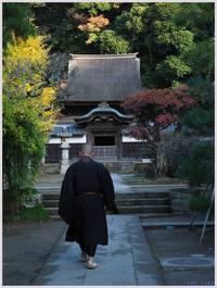 鎌倉散歩・円覚寺-2168) - 趣味の写真 ~OLYMPUS E-M1MarkⅡ、PenF~
