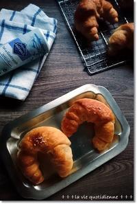 ぶっさいくな塩パンと王子…インフルA💦インフルの種類 - 素敵な日々ログ+ la vie quotidienne +