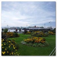 #2329氷川丸のある風景 - at the port