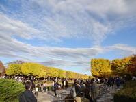 立川市『国営昭和記念公園』~ランチ♪ - おいしい日々