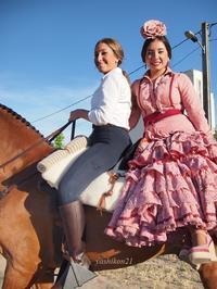 Nava Del Rey Ⅶ / Spain - 花鳥風猫ワン