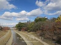 岡崎城と八丁味噌。【スライドショーあり】 - yamatoのひとりごと