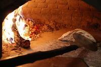 寒くて、寒くてチーズがおいしくてたまらない! - オープンガーデン villapawa land