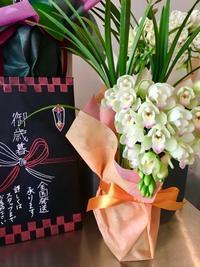 お歳暮 - ~ Flower Shop D.STYLE ~ (新所沢パルコ・Let's館1F)
