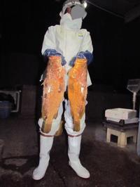 キジハタと P&P - 漁・猟師(直売有)の主人と島で田舎暮らし~
