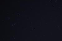 双子座流星群2017 - 花と小鳥の図鑑風