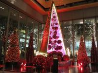 【丸ビルのクリスマスツリーと丸の内仲通りのイルミネーションとKITTE】 - お散歩アルバム・・秋日和