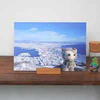 2018年あみぐるみ卓上カレンダーの紹介です♪ - Smiling * Photo & Handmade 2 動物のあみぐるみ・レジンアクセサリー・風景写真のポストカード