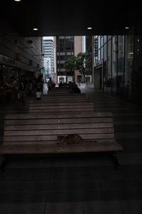 猫の憩い - little island walking,