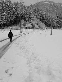 現在の積雪14㎝・薄晴れの朝・・・・・朽木小川・気象台より - 朽木小川・気象台より、高島市・針畑郷・くつきの季節便りを!