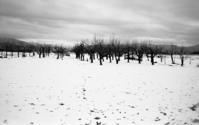 冬の田園風景 秋田 - 黒ニャンコのひとり言