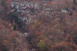 秋から冬へ - 但馬・写真日和