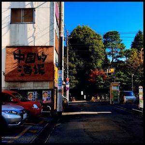 12月16日(土)ワンデイ・ワンイシュー主義 - 毎日jogjob日誌 by東良美季