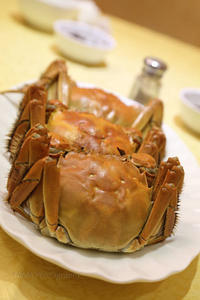上海蟹@2017 HONGKONG - TAMAの卵