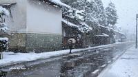 雪の朝 - 晴れ時々そよ風