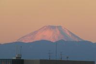 今朝の富士山♪ - 新 LANILANIな日々